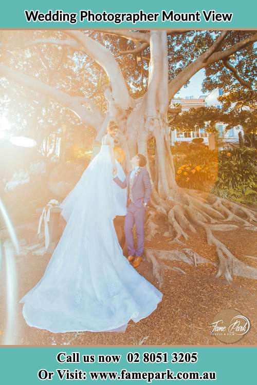 Photo of the Bride and the Groom looking each other under the tree Mount View NSW 2325