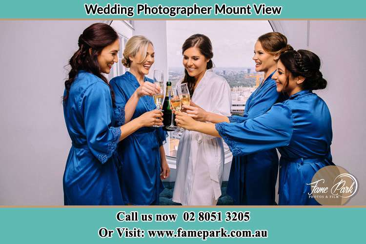 Photo of the Bride and her bridesmaids having wine Mount View NSW 2325