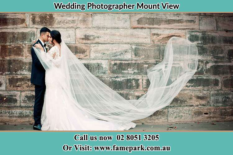 Bride and Groom Beside the wall Mount View
