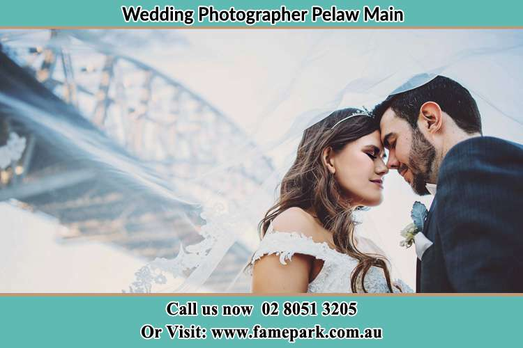 Close up photo of the Bride and the Groom under the bridge Pelaw Main NSW 2327