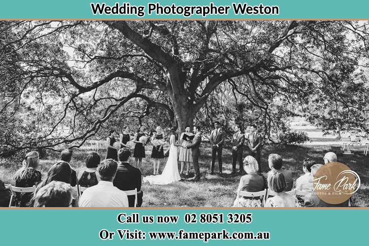Wedding ceremony under a big tree photo Weston NSW 2326